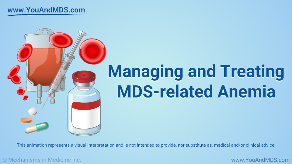 Animation - Managing and Treating MDS-related Anemia
