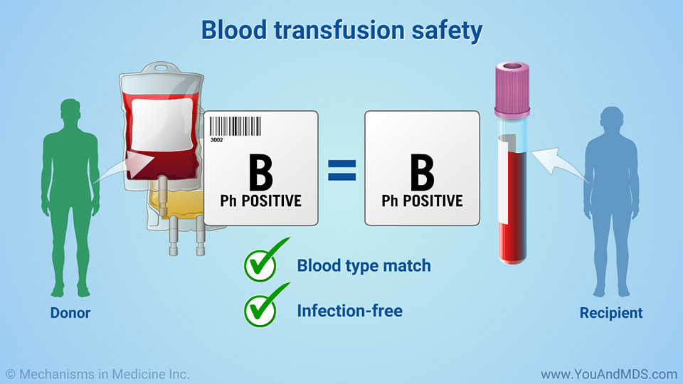 Blood transfusion safety