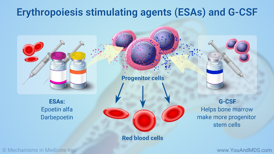 Erythropoiesis stimulating agents (ESAs) and G-CSF