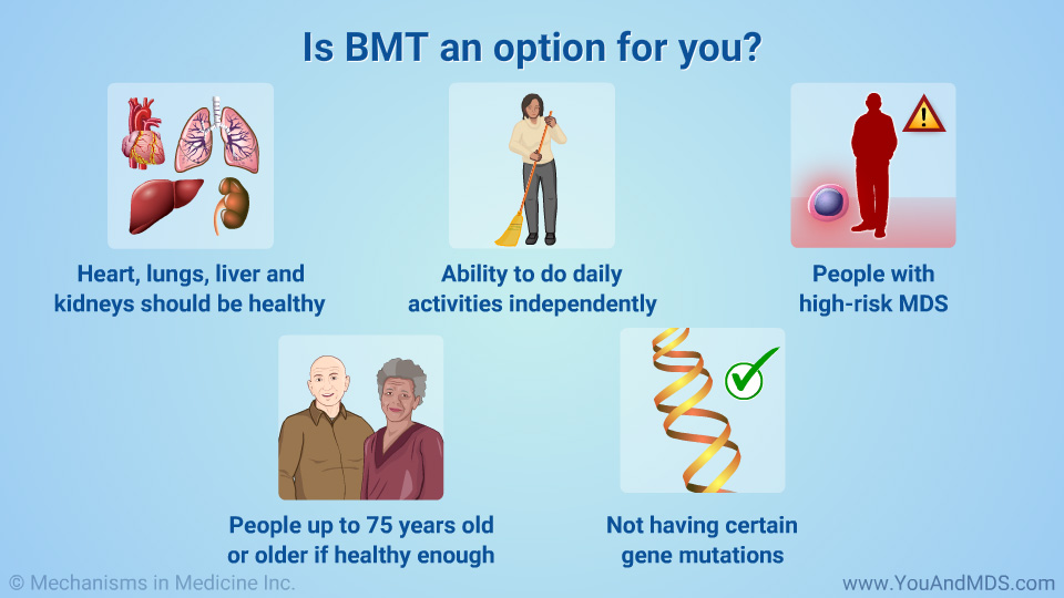 Is BMT an option for you?